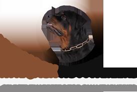 Kyrajack Rottweilers, Kyrajack, Rottweilers